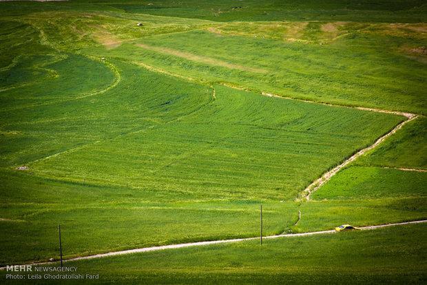 طبیعت گردی؛ شاخص گردشگری استان ایلام برای ایام نوروز
