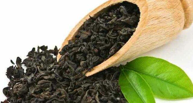 صادرات چای هند به ایران دو برابر شد