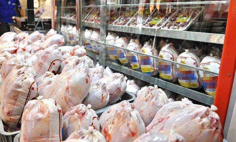 خبرنگاران مراکز توزیع مرغ در خوزستان مجوز دریافت نمایند